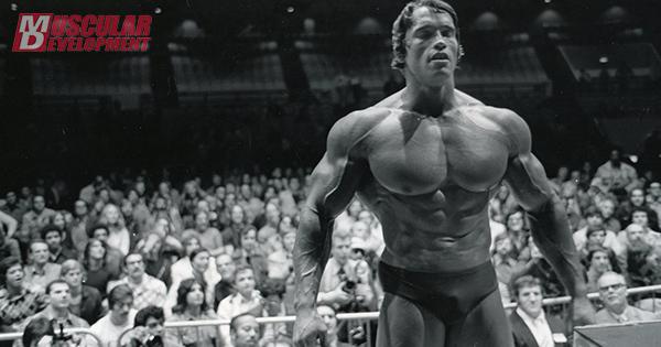 15NN011-Arnold