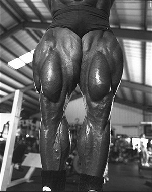 Perfil de la estrella: Tom Platz - The Golden Eagle Platz5b